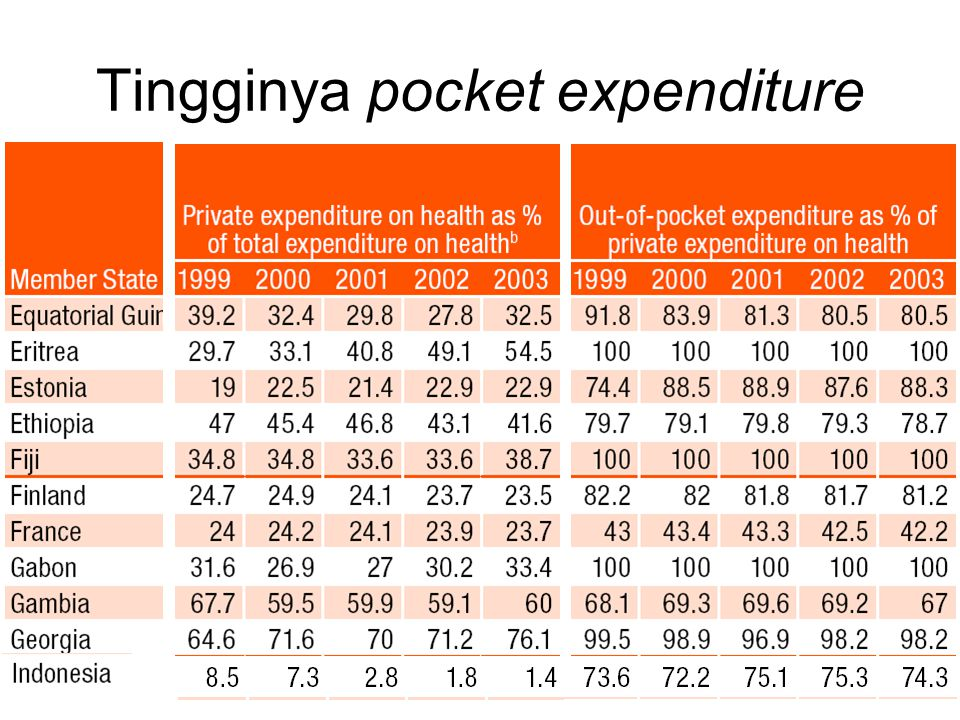 Tingginya pocket expenditure