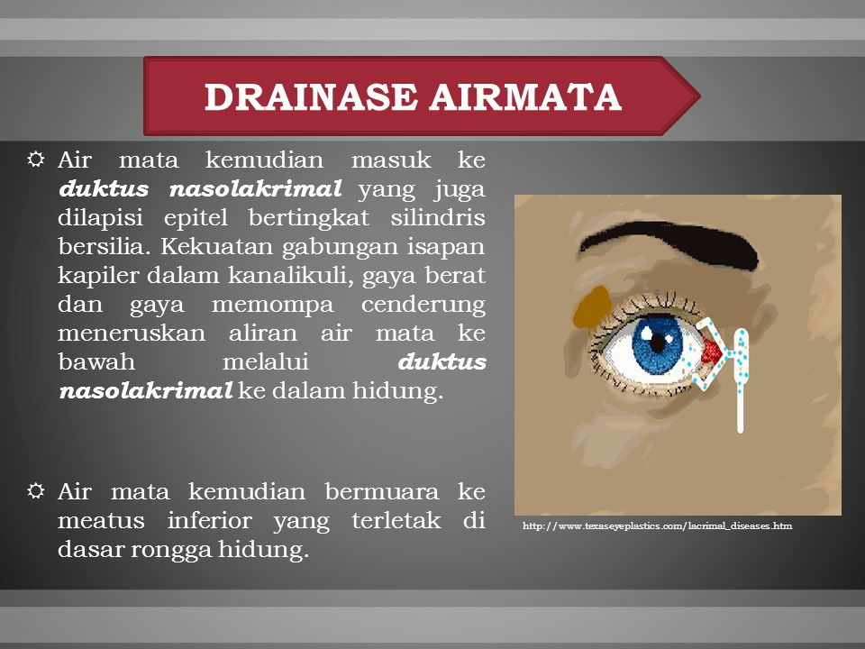 DRAINASE AIRMATA