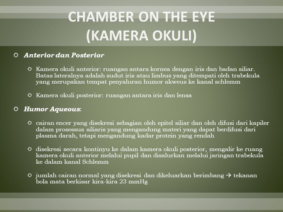CHAMBER ON THE EYE (KAMERA OKULI)