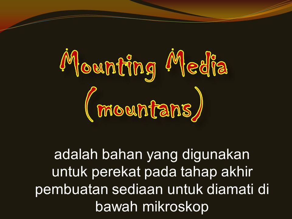 Mounting Media (mountans)