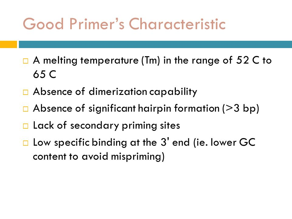 Good Primer's Characteristic