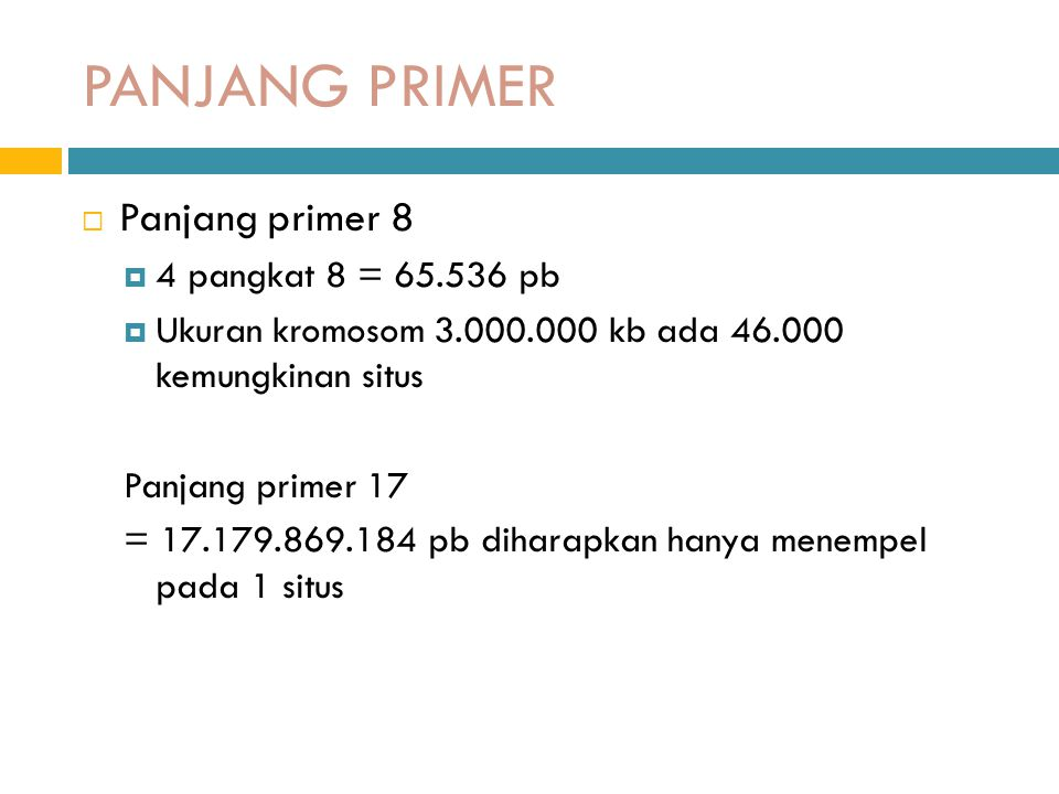 PANJANG PRIMER Panjang primer 8 4 pangkat 8 = 65.536 pb