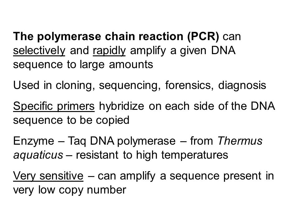 The polymerase chain reaction (PCR) can selectively and rapidly amplify a given DNA sequence to large amounts