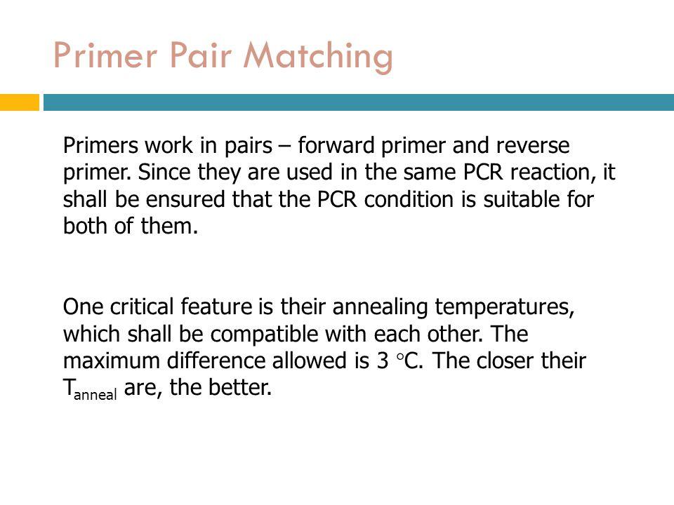Primer Pair Matching