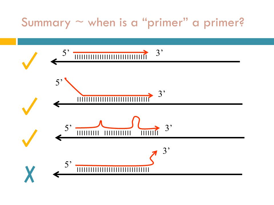Summary ~ when is a primer a primer