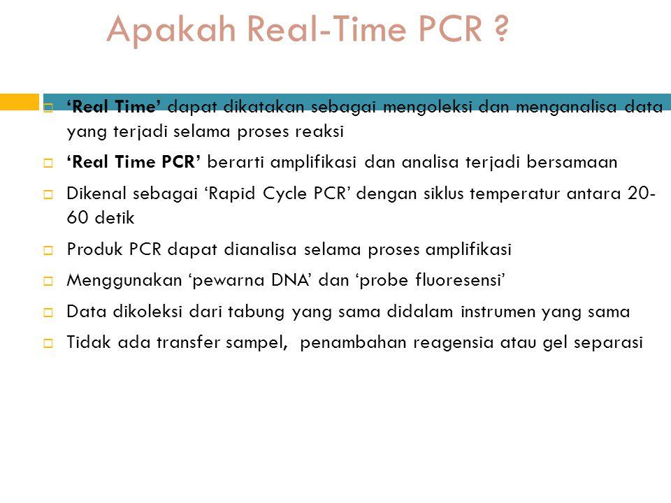 Apakah Real-Time PCR 'Real Time' dapat dikatakan sebagai mengoleksi dan menganalisa data yang terjadi selama proses reaksi.
