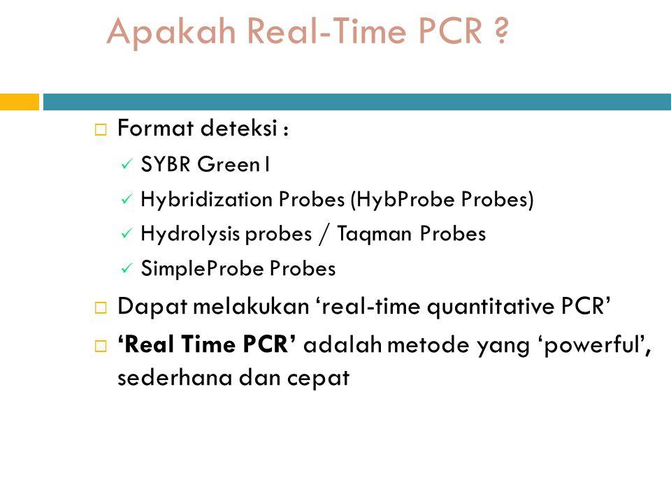 Apakah Real-Time PCR Format deteksi :