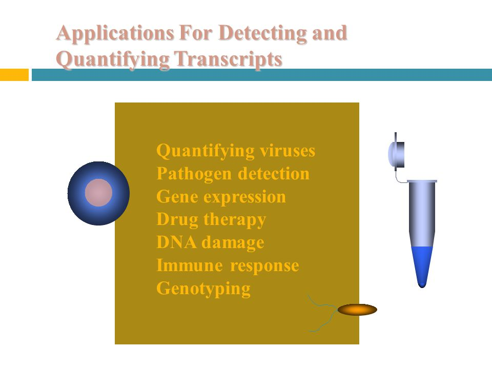 Applications For Detecting and Quantifying Transcripts