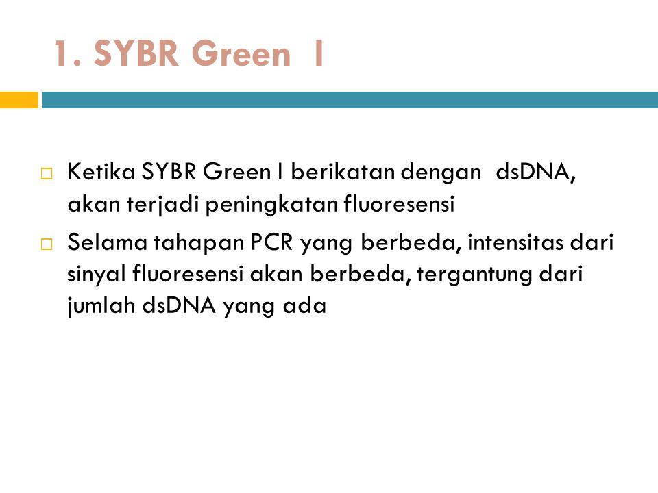 1. SYBR Green I Ketika SYBR Green I berikatan dengan dsDNA, akan terjadi peningkatan fluoresensi.