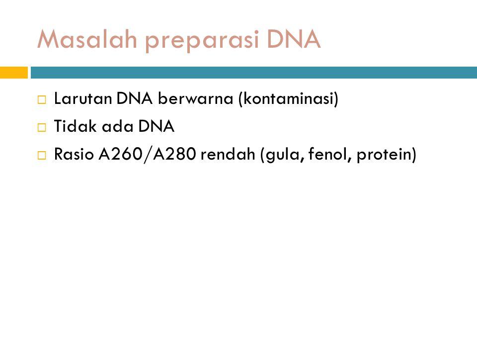 Masalah preparasi DNA Larutan DNA berwarna (kontaminasi) Tidak ada DNA