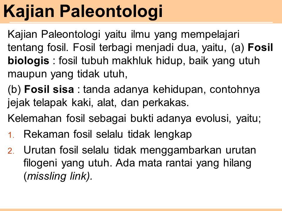 Kajian Paleontologi
