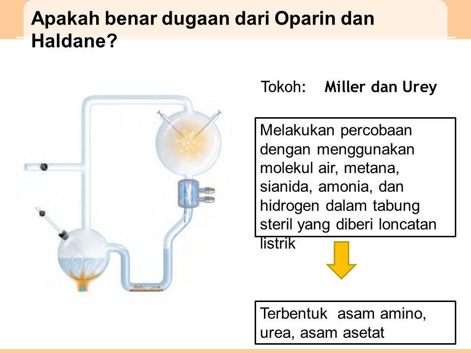 Apakah benar dugaan dari Oparin dan Haldane