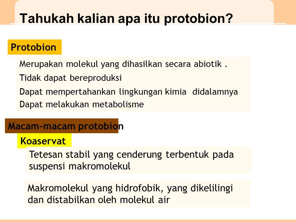 Tahukah kalian apa itu protobion