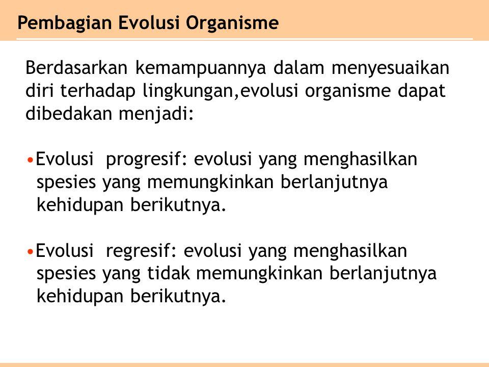 Pembagian Evolusi Organisme