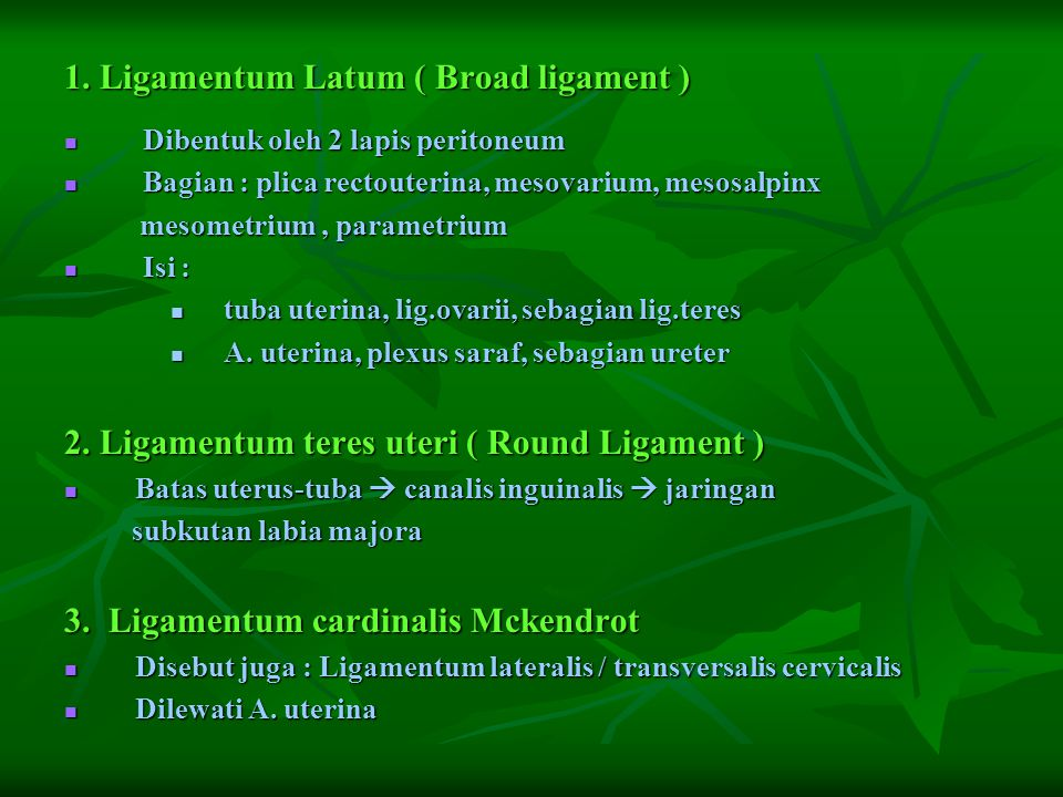 1. Ligamentum Latum ( Broad ligament )