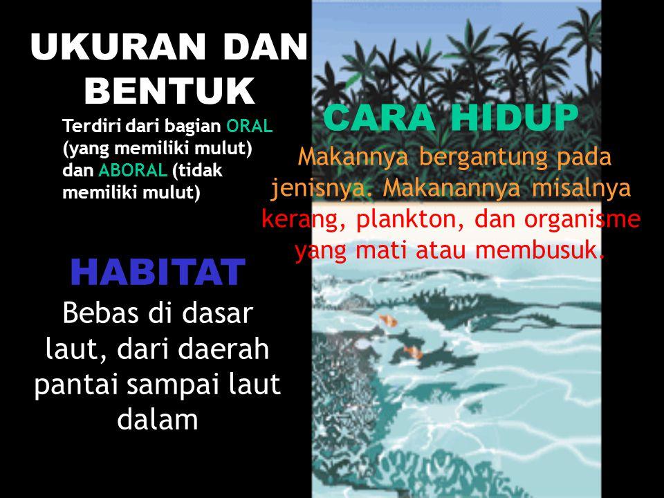 Bebas di dasar laut, dari daerah pantai sampai laut dalam