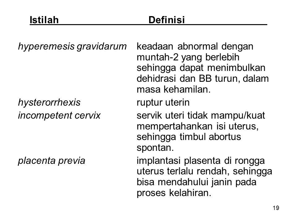 Istilah Definisi