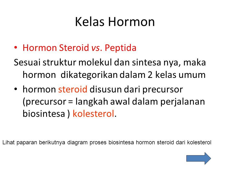 Kelas Hormon Hormon Steroid vs. Peptida