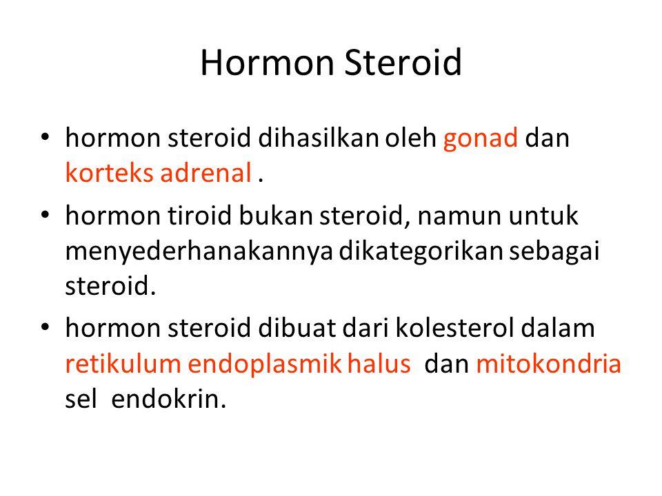 Hormon Steroid hormon steroid dihasilkan oleh gonad dan korteks adrenal .