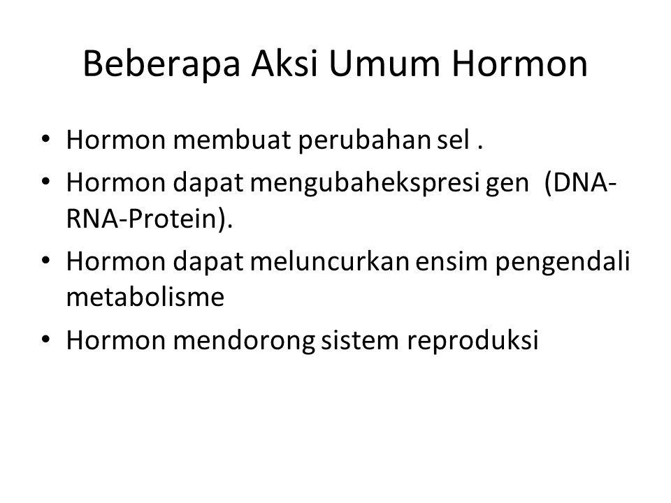 Beberapa Aksi Umum Hormon