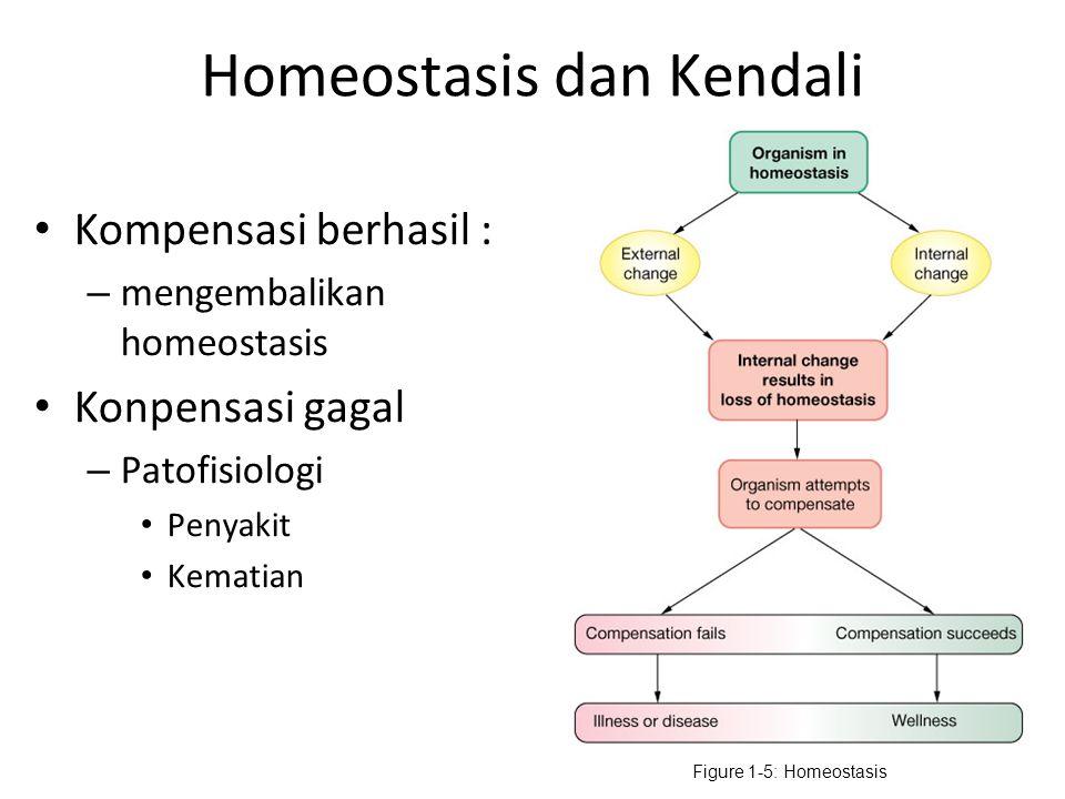 Homeostasis dan Kendali