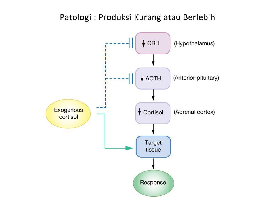Patologi : Produksi Kurang atau Berlebih