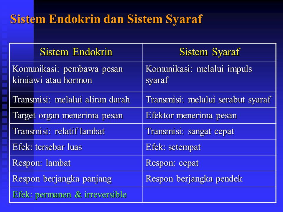 Sistem Endokrin dan Sistem Syaraf