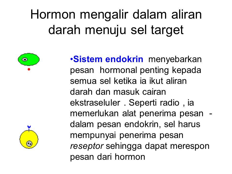 Hormon mengalir dalam aliran darah menuju sel target