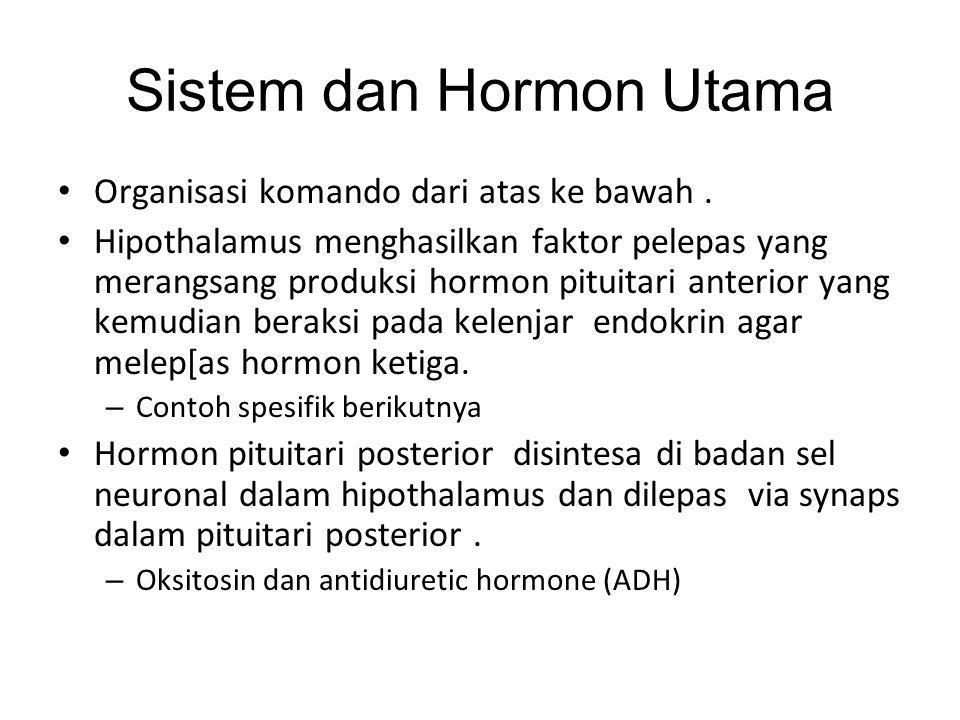 Sistem dan Hormon Utama