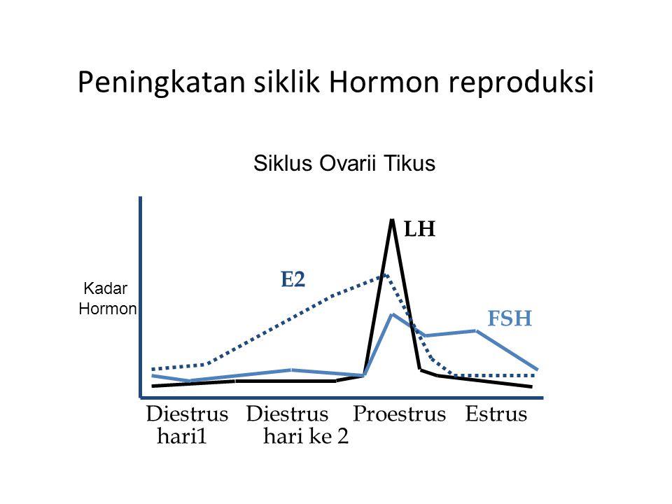 Peningkatan siklik Hormon reproduksi