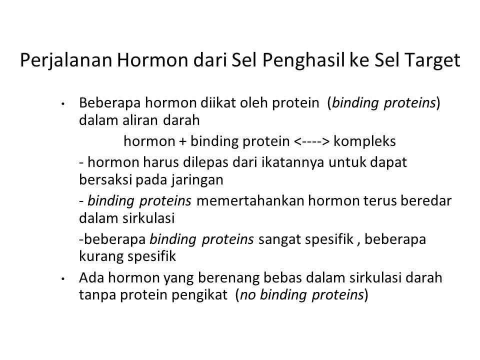 Perjalanan Hormon dari Sel Penghasil ke Sel Target
