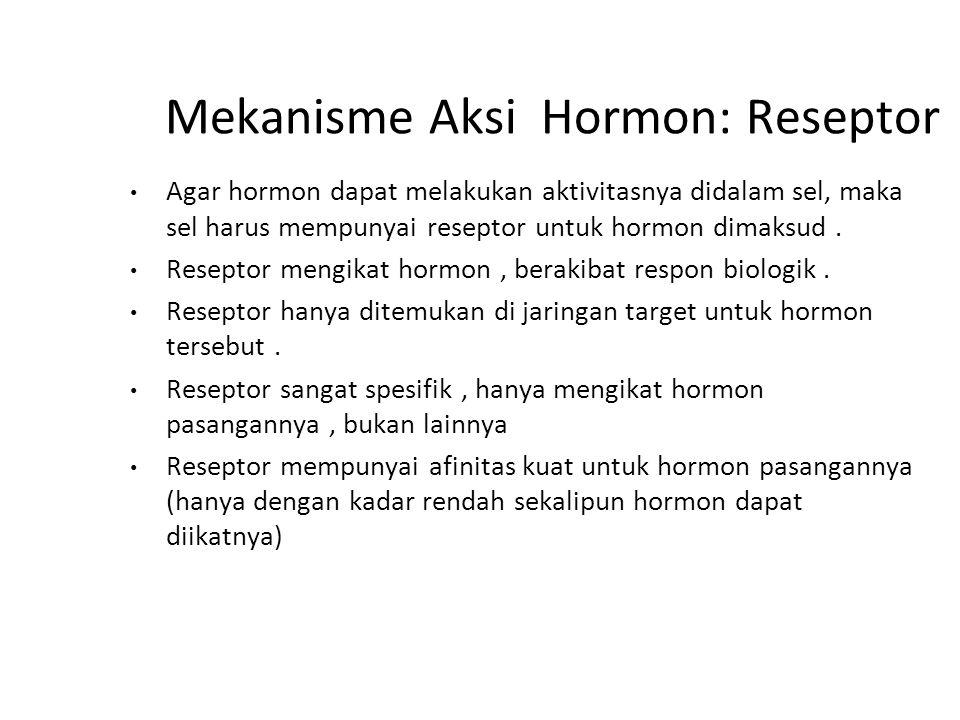 Mekanisme Aksi Hormon: Reseptor