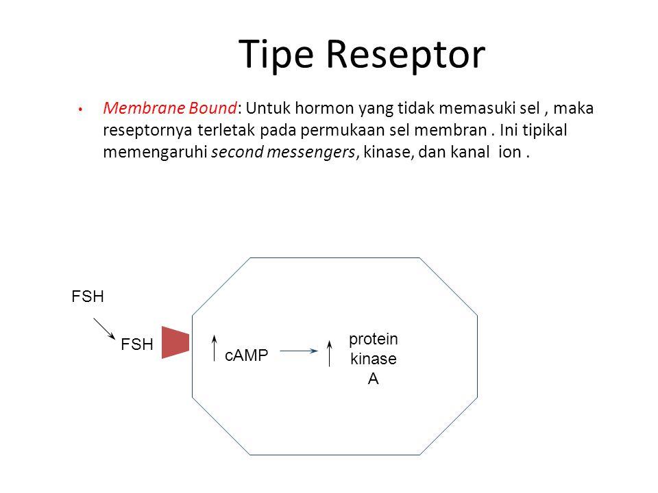 Tipe Reseptor