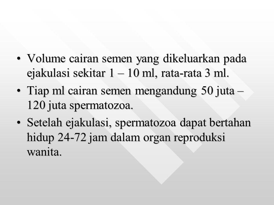 Volume cairan semen yang dikeluarkan pada ejakulasi sekitar 1 – 10 ml, rata-rata 3 ml.