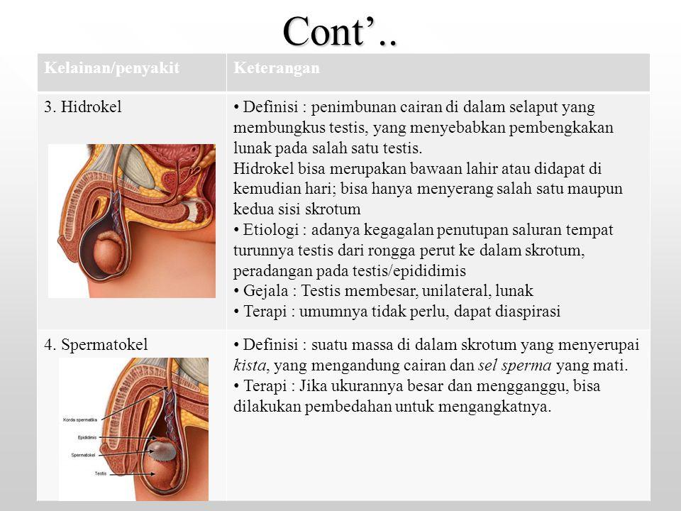 Cont'.. Kelainan/penyakit Keterangan 3. Hidrokel