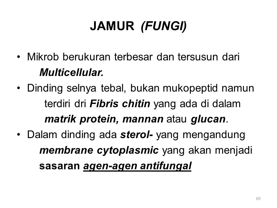 JAMUR (FUNGI) Mikrob berukuran terbesar dan tersusun dari