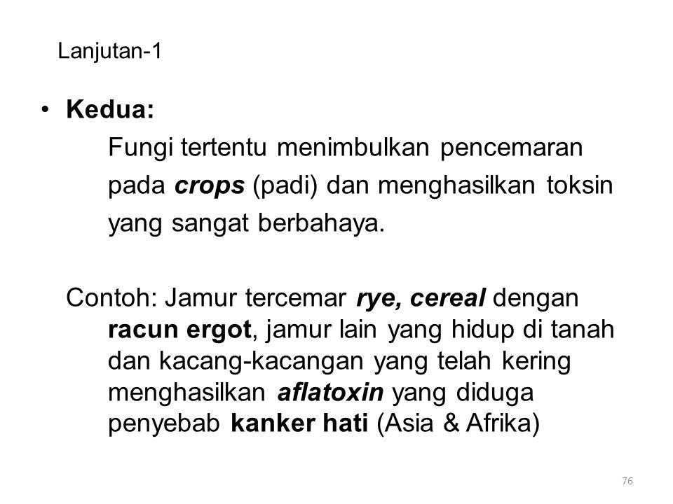 Fungi tertentu menimbulkan pencemaran
