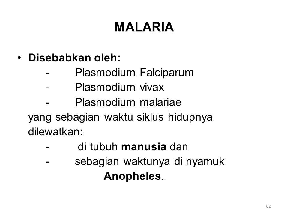 MALARIA Disebabkan oleh: - Plasmodium Falciparum - Plasmodium vivax