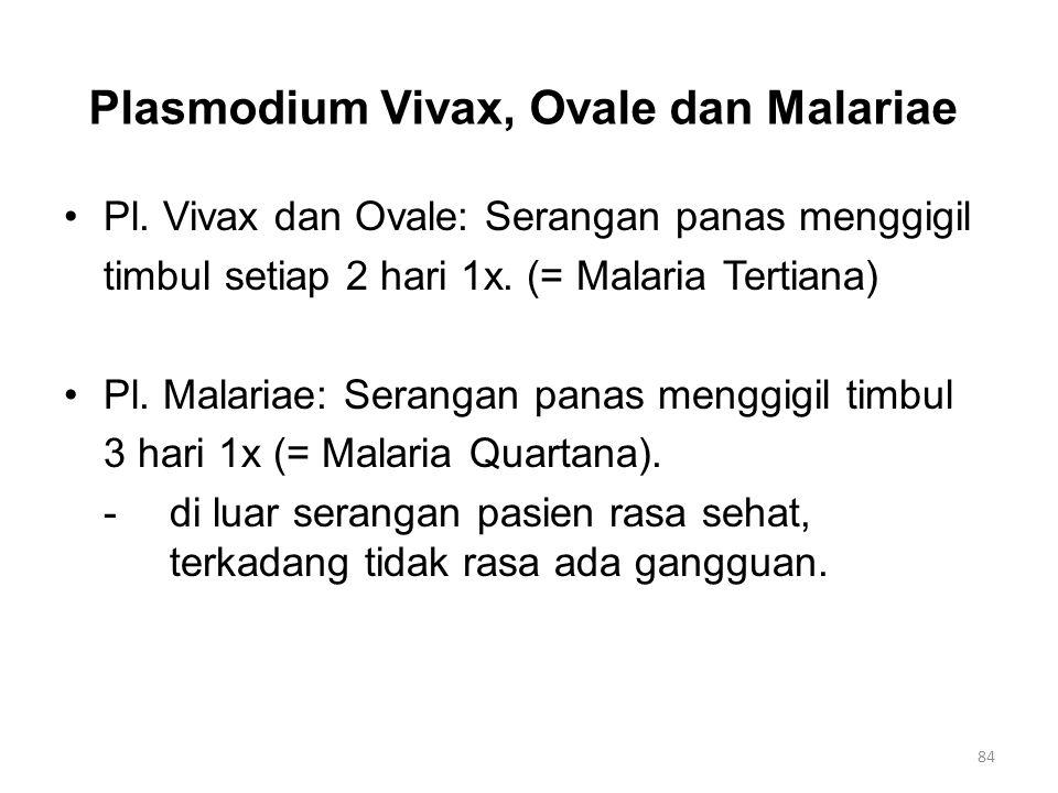 Plasmodium Vivax, Ovale dan Malariae