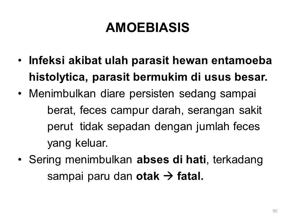 AMOEBIASIS Infeksi akibat ulah parasit hewan entamoeba
