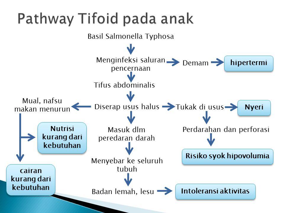 Pathway Tifoid pada anak