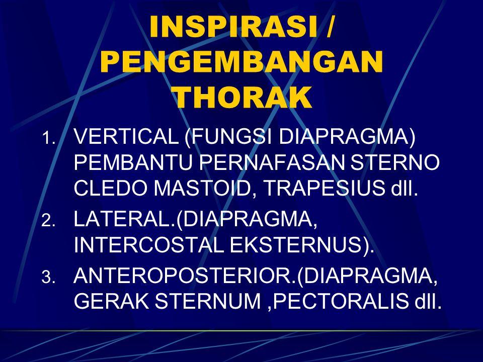 INSPIRASI / PENGEMBANGAN THORAK