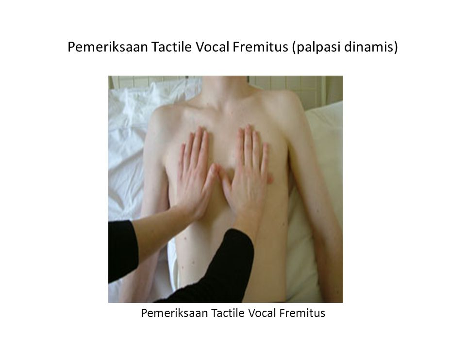 Pemeriksaan Tactile Vocal Fremitus (palpasi dinamis)