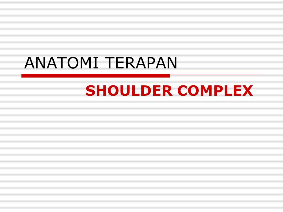 ANATOMI TERAPAN SHOULDER COMPLEX