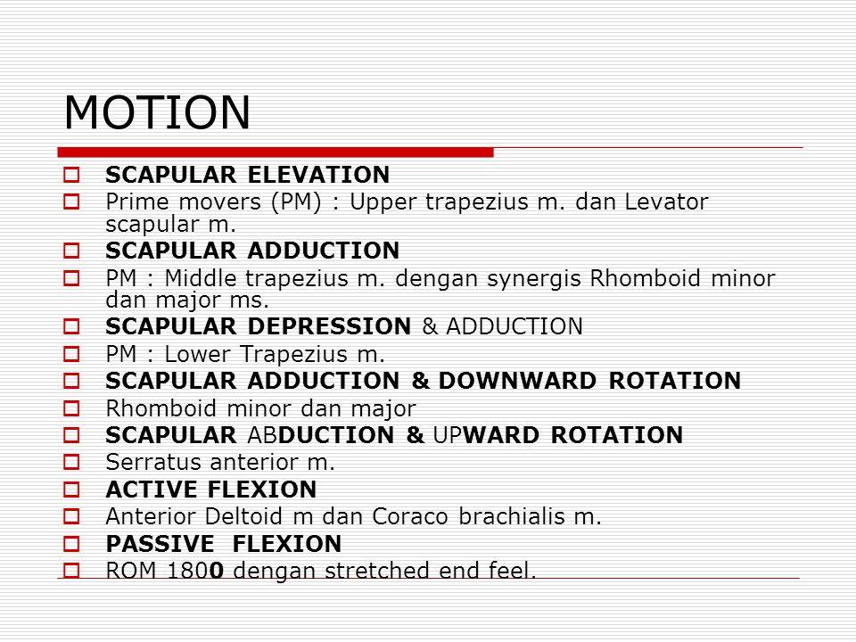 MOTION SCAPULAR ELEVATION