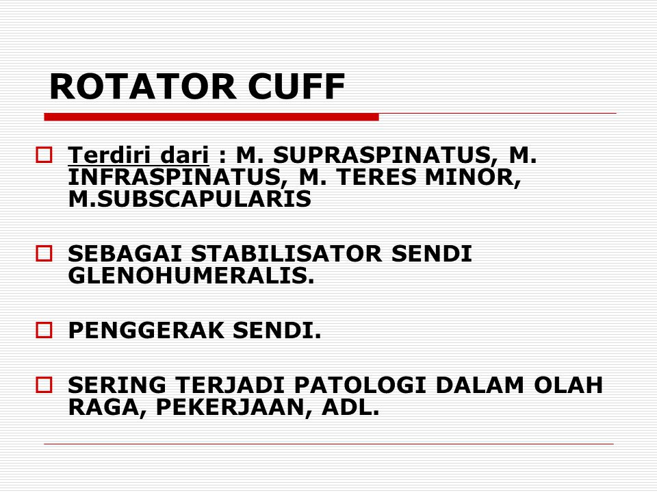 ROTATOR CUFF Terdiri dari : M. SUPRASPINATUS, M. INFRASPINATUS, M. TERES MINOR, M.SUBSCAPULARIS. SEBAGAI STABILISATOR SENDI GLENOHUMERALIS.