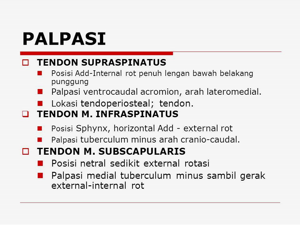 PALPASI TENDON M. SUBSCAPULARIS Posisi netral sedikit external rotasi