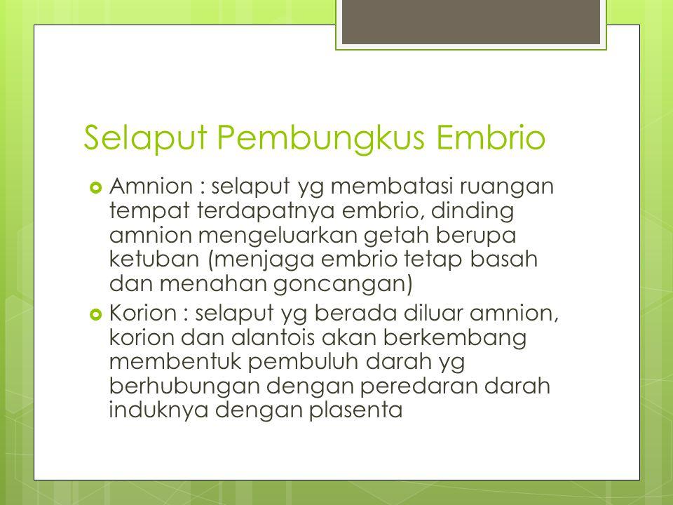 Selaput Pembungkus Embrio