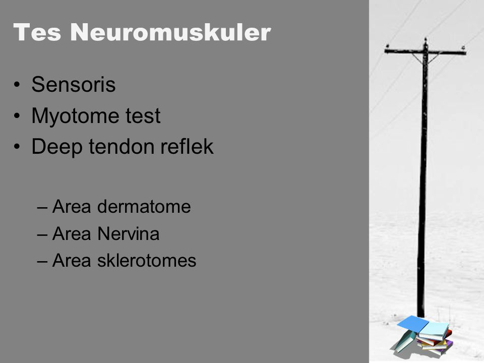 Tes Neuromuskuler Sensoris Myotome test Deep tendon reflek