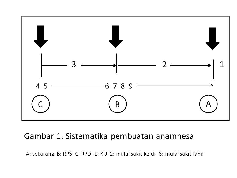 Gambar 1. Sistematika pembuatan anamnesa